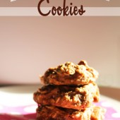 Breakfast Cookies {Freezer Meal}