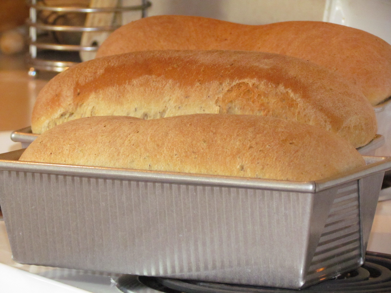 A step-by-step tutorial to make the tastiest homemade wheat bread you've ever had! It's simpler than you think. #realfood
