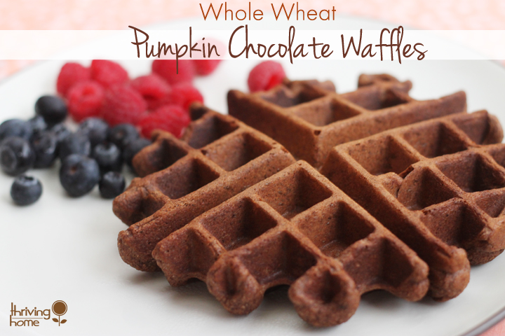 healthy whole wheat pumpkin chocolate waffle recipe