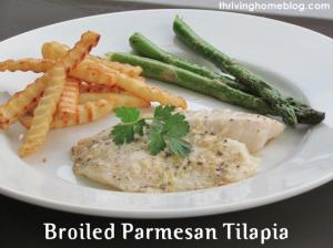 Broiled Parmesan Tilapia Recipe