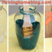 Cheap and Easy Decorating Idea: Paint the Inside of a Glass Vase