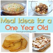 Healthy Recipe Ideas for a One Year Old