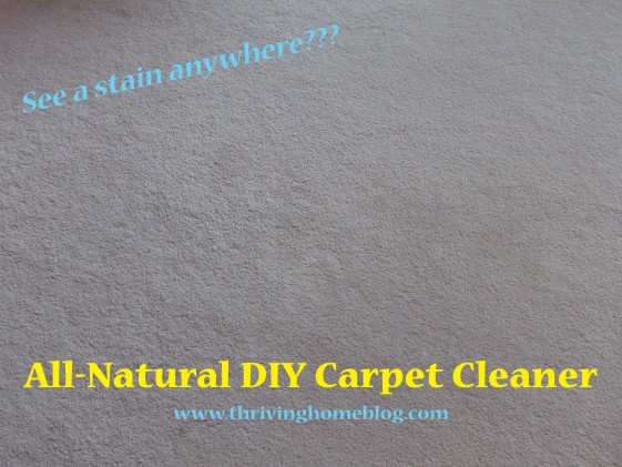 DIY All-Natural Carpet Cleaner - homemade and non-toxic