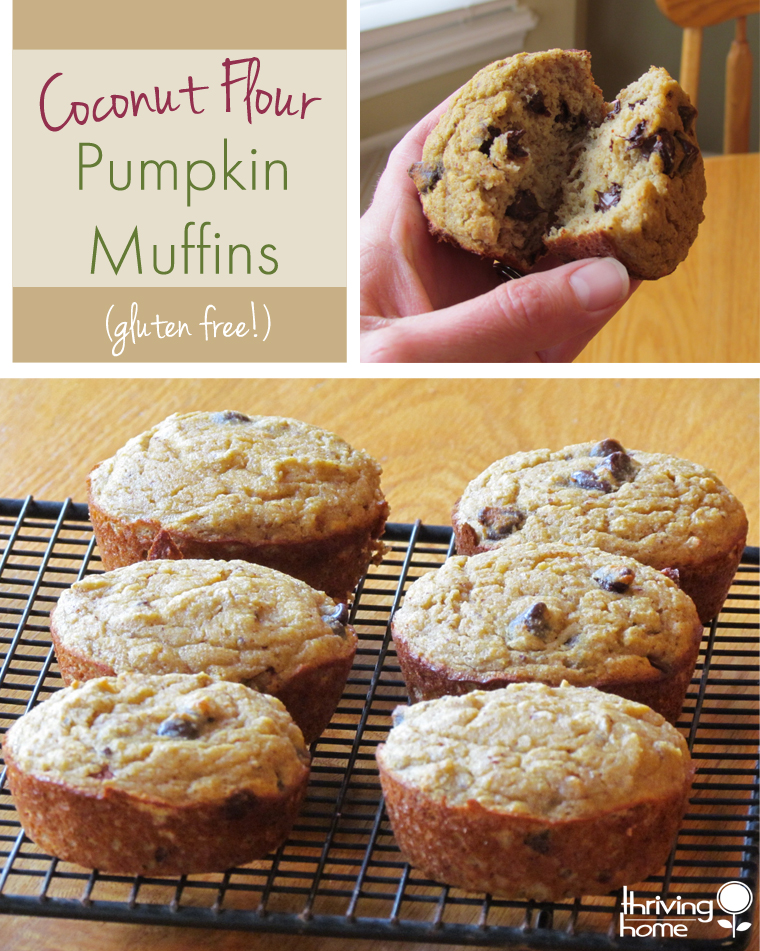 These hearty, delicious muffins are gluten free and packed with ingredients that you can feel good about eating.
