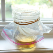 diy fruit fly trap2