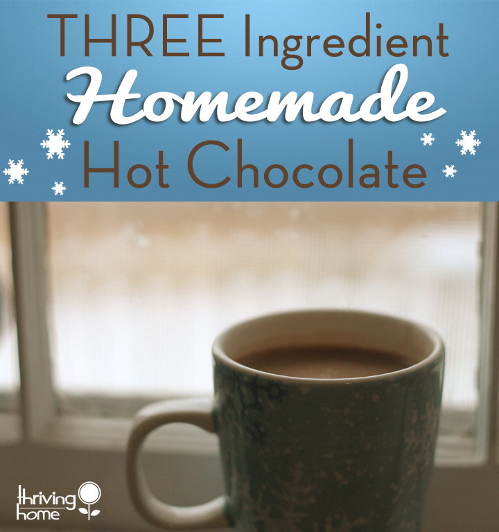 Skip the store bought variety and make your own homemade hot chocolate with only three ingredients!