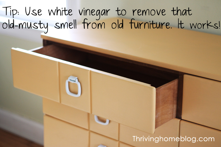 white vinegar tip