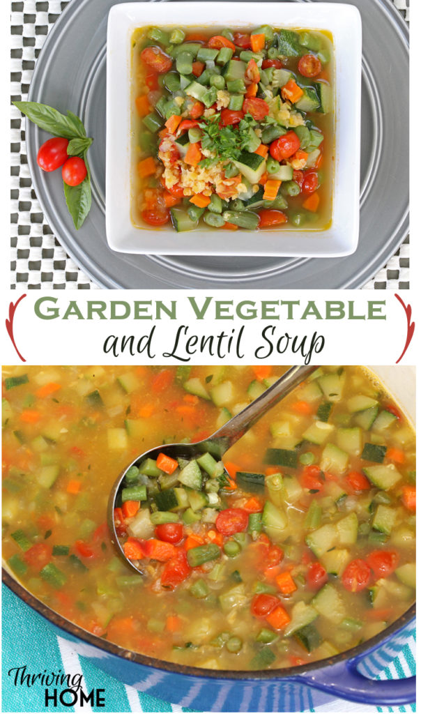 garden vegetable lentil soup