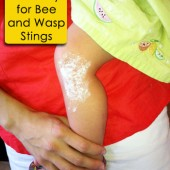 DIY Bee and Wasp Sting Remedy