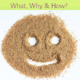 why eat flaxseed