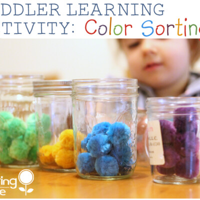 Easy Toddler Learning Activity: Color Sorting with Mason Jars
