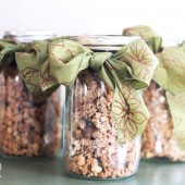 The Gift of Granola: Cheap and Easy Christmas Idea!