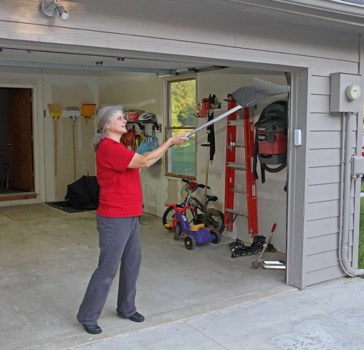 How To Get A Hummingbird Out Of Garage