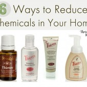 6 Simple Ways to Reduce Chemicals In Your Home (+ Win $79 Worth of Young Living Products-EXPIRED)