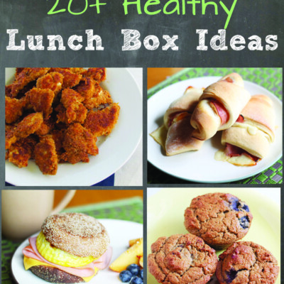 20+ Healthy Lunch Box Ideas