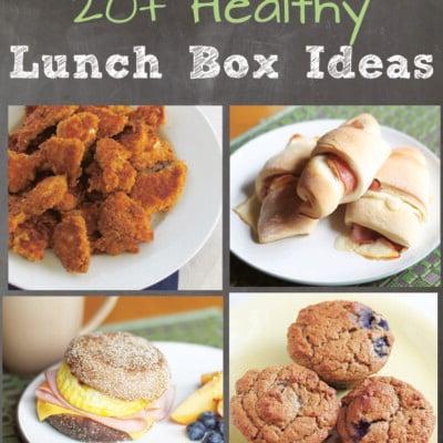 20+ Healthy Lunch Box Ideas