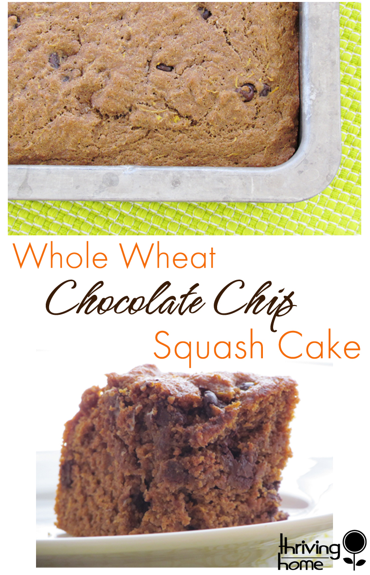 Whole Wheat Chocolate Chip Squash Cake