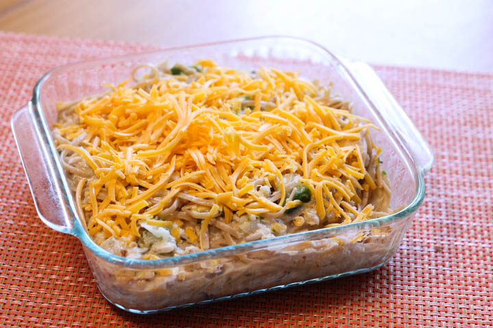 ChThis dish is sure to be a meal that your family will eat again and again.  The delicious combination of chicken, noodles, and cheese makes this one a winner!