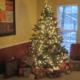 Family Christmas Celebration