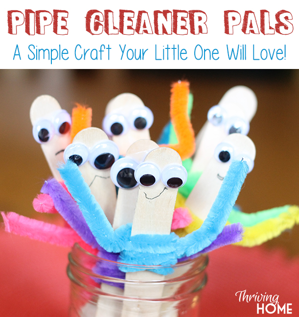 craft with pipe cleaners