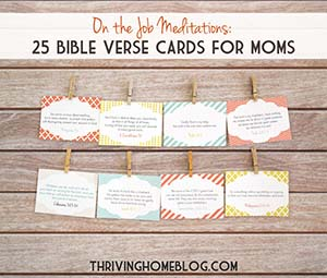 On the Job Meditations: 25 Bible Verse Cards for Moms