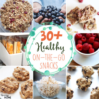 30+ Healthy On-the-Go Snacks (and How I Get My Family to Eat Them)