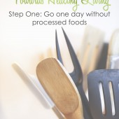 Healthy Living Small Step #1: Go One Day Without Processed Foods