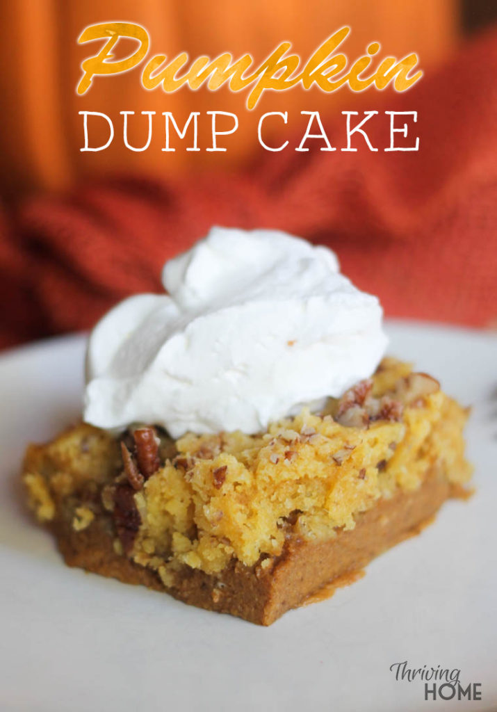 Easy Pumpkin Dump Cake Recipe