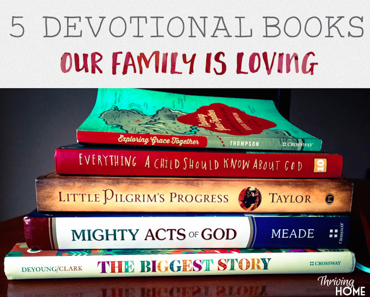 These God-centered, grace-centered books have helped our family have a bigger, truer view of our God this past year.