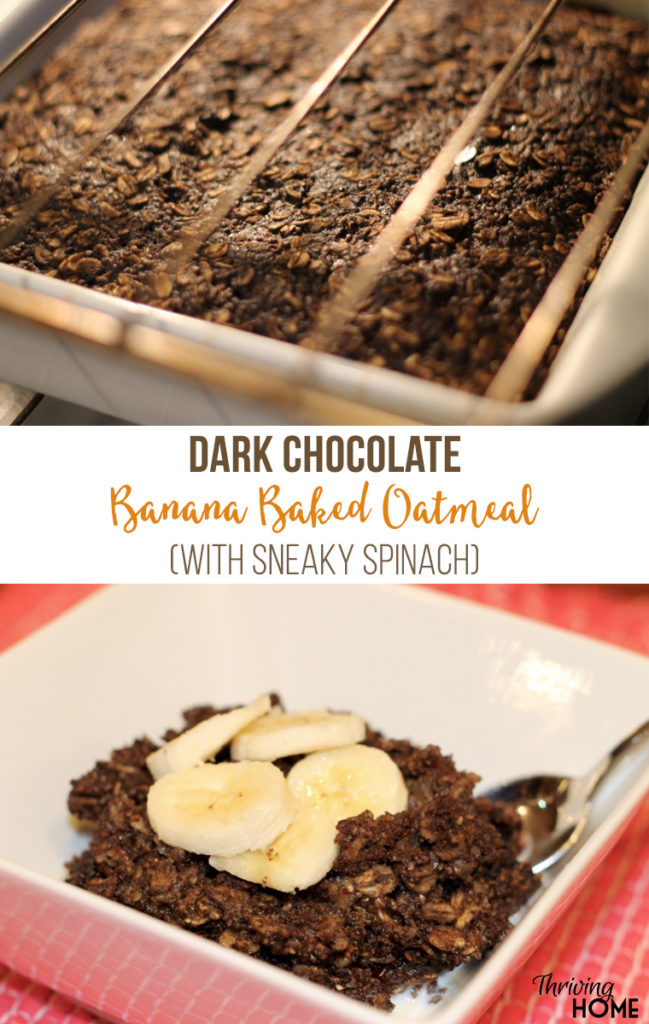 This warm bowl of comfort is just pure dark chocolatey oatmeal goodness...filled with lots of fiber, vitamins, and minerals!