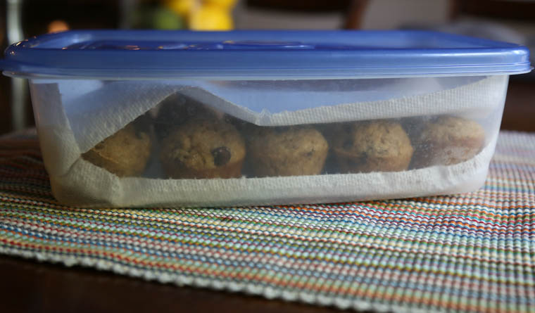 Two easy ways to save and store your muffins. You can save loads of time and money by doubling your muffin batches and freezing them or storing them on the counter with this handy trick!