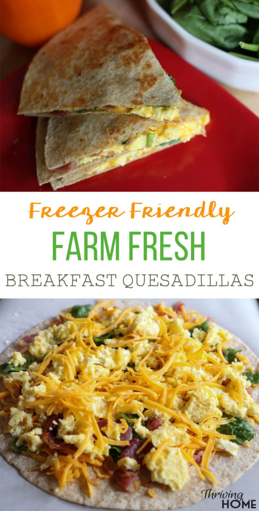 farm fresh breakfast quesadillas