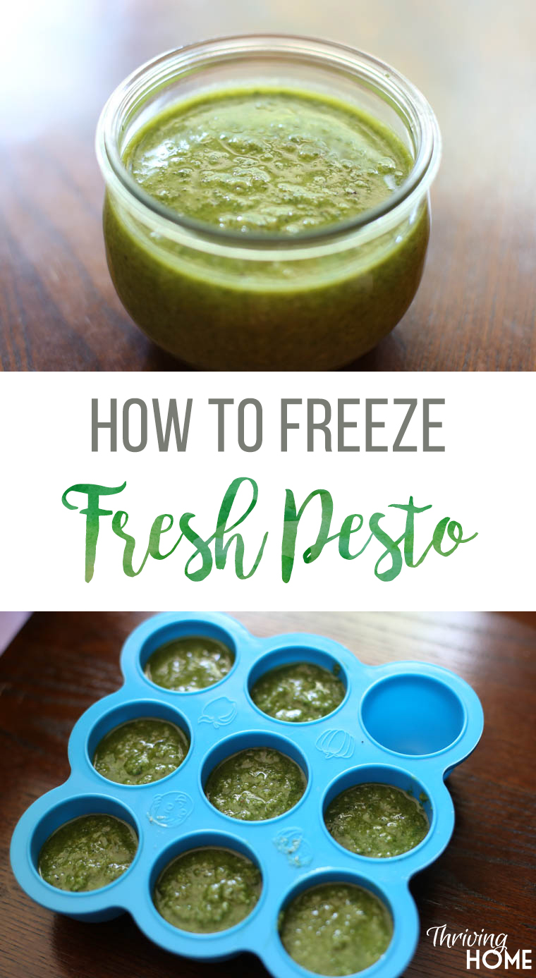 How to freeze fresh basil pesto. Use this trick to have freshly made pesto for your recipes all year long!