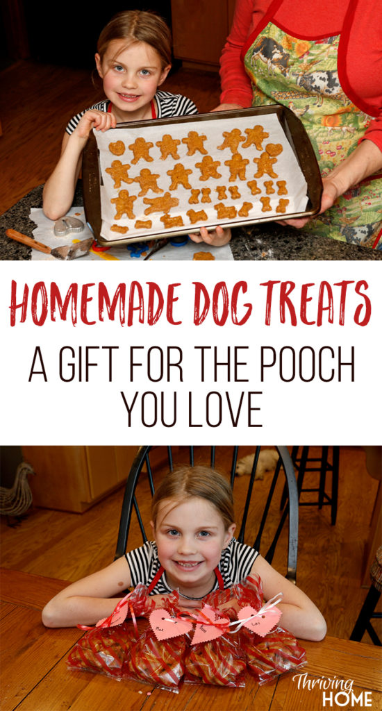 Healthy Dog Treats is the perfect gift for furry friends and their owners on Valentine's Day or any day!
