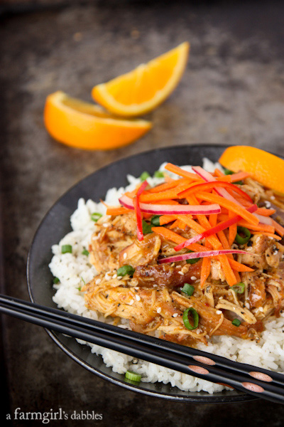 101 Real Food Slow Cooker Freezer Meals - Your life just got easier and healthier with this list of the best whole foods freezer meals for the slow cooker. Enjoy these real food crockpot recipes today or freeze for later
