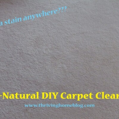 Homemade All Natural Carpet Cleaner Thriving Home